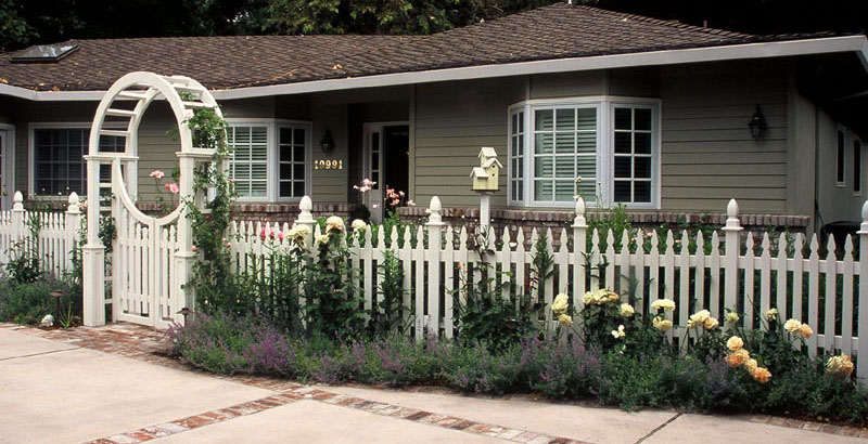 white picket fence and white roses